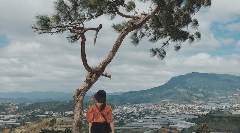 8 địa điểm view toàn cảnh Đà Lạt mà bạn không thể bỏ lỡ